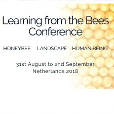 Learning from the bees conference 2018