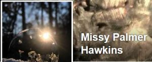 Missy Palmer Hawkins - wildlife photographer